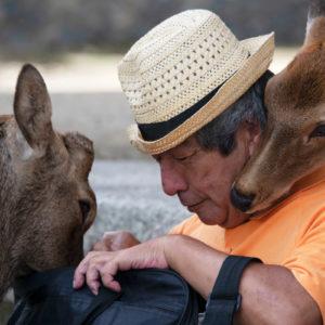 Nara Man With Deer